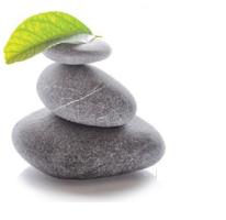 pierres-logo-vierge